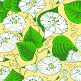 蝴蝶下落花卉花重点模式黄色 免版税库存照片