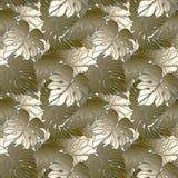 蝴蝶下落花卉花重点模式黄色 库存图片