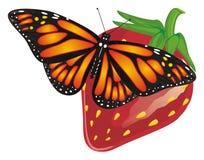蝴蝶和大莓果 免版税库存图片