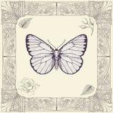 蝴蝶和玫瑰色图画 图库摄影
