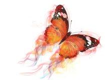 蝴蝶图表 免版税库存照片