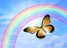 蝴蝶天空彩虹 库存照片