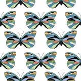 蝴蝶无缝的样式 库存图片