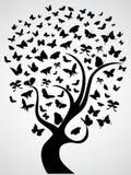 蝴蝶树 免版税库存图片