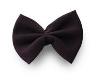 以蝴蝶的形式领带 免版税库存照片