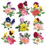 蝴蝶花和玫瑰的套 库存照片