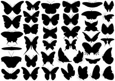 蝴蝶集合 向量例证