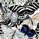 蝴蝶黑白水彩无缝的背景 免版税库存照片