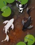 蝴蝶koi鱼游泳在有蜻蜓和睡莲叶的池塘 免版税库存图片