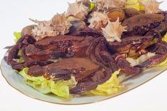 螃蟹、蜗牛和蛤蜊在烹调前,盘在白色backgrou 免版税库存照片