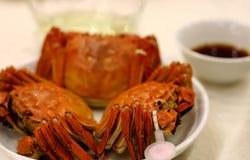 螃蟹中间秋天的节日 免版税库存图片