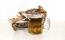 螃蟹和啤酒 库存图片