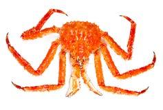 螃蟹国王 免版税库存图片