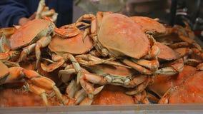 螃蟹在市场上被烹调 影视素材