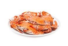 螃蟹在白色背景隔绝的蒸的海鲜 免版税库存照片
