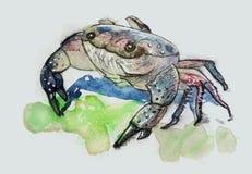螃蟹字符 向量例证