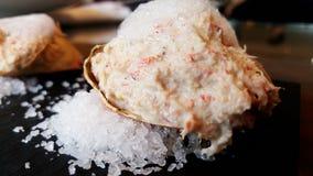 螃蟹浆糊,沙拉,开胃菜 图库摄影