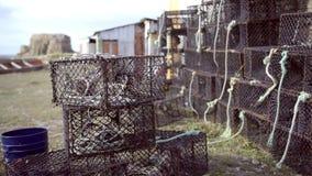 螃蟹的笼子 影视素材