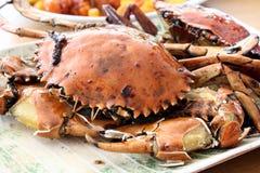 螃蟹盘 库存照片