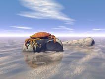 螃蟹 图库摄影