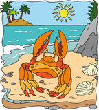 螃蟹 库存例证
