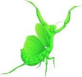 螳螂,被绘的漫画人物,传染媒介例证 免版税图库摄影