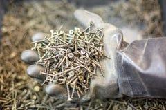 螺丝在手中,在橡胶手套的手,建筑概念 库存照片