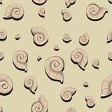 螺旋颜色无缝的样式 免版税库存图片