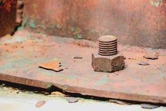 螺栓和螺母 库存照片