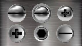 螺栓集合传染媒介几个铁螺丝和头  库存例证