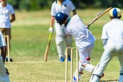 蟋蟀比赛行动少年 免版税库存照片