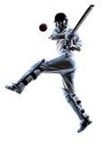 蟋蟀球员板球运动员剪影 库存照片