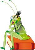 蟋蟀联系 库存例证