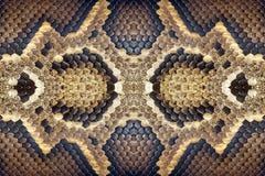 蟒蛇的纹理和样式 免版税库存图片