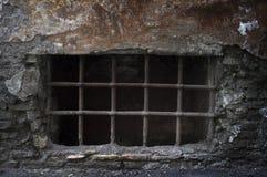 蠕动的地窖 免版税库存图片