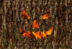 蠕动的微笑木背景,在吠声假日万圣夜背景的火面具 库存照片
