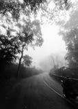 蠕动的有雾的路 免版税库存图片