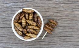 蠕虫昆虫或蝶蛹桑蚕在白皮书杯子在木桌上 蛋白质从昆虫的食物来源的概念 ??a 库存照片