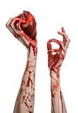 血液和万圣夜题材:可怕的血淋淋的在白色背景隔绝的手举行被撕毁的流血的人的心脏在演播室 库存照片