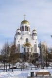 血液大教堂的救主在冬天 免版税库存照片