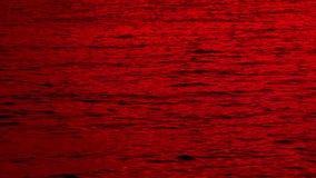 血液红海  股票录像