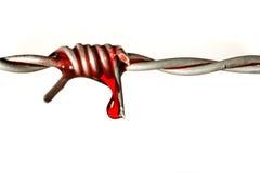 血液自由 免版税图库摄影