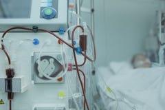 血液透析用具连接了到重症监护病房的患者 免版税库存图片