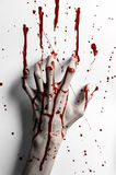 血淋淋的万圣夜题材:在白色的血淋淋的手印刷品留下血淋淋的墙壁 免版税库存照片