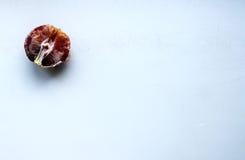 血淋淋的桔子 库存图片