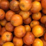 血淋淋的红色桔子,柑桔背景 免版税图库摄影