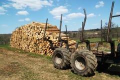 行业记录的资源木材 免版税图库摄影