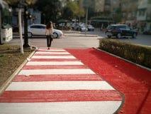 行人交叉路,地拉纳,阿尔巴尼亚 免版税库存照片