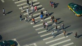 行人穿越道&交通在都市城市,斑马线鸟瞰图  股票视频
