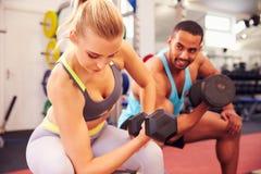 行使与哑铃的男人和妇女在健身房 库存图片